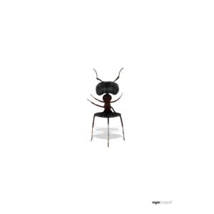 Myren – A5